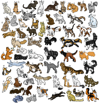Warrior Cat Cheap Adoptables 44/61 OPEN 5-20 POINT by WCwriter53227