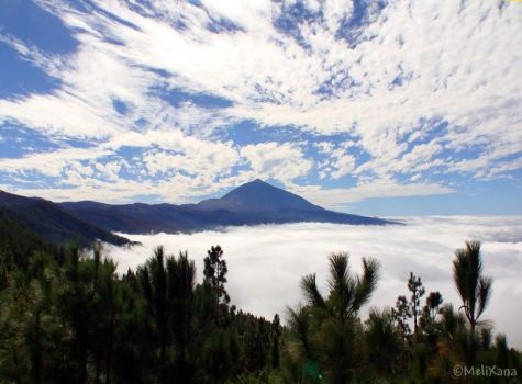 Der Teide by Martina-WW