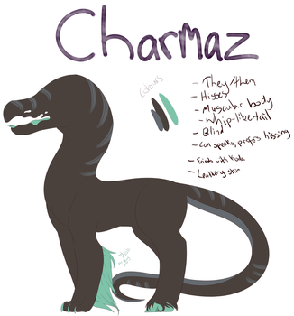 Charmaz Info Sheet by Dragonheart0211