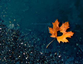 Autumn in my heart by najmo