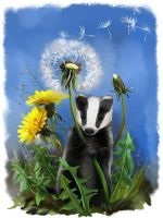Baby badger and dandelions by Kajenna