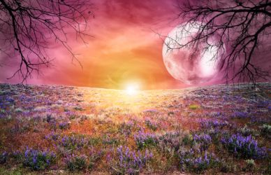PREMADE BACKGROUND 1 by Evvers