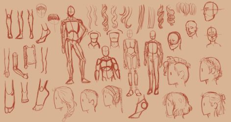 Human Anatomy Practice by icedragon78970