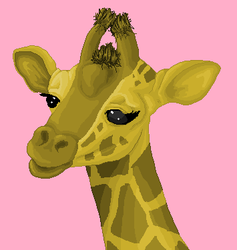 Male Giraffe by stacistasis