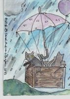 Raining Cats #5 (2013) by ladywillowpdx