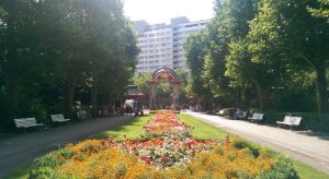 Flower Entrance - Berlin by casper033