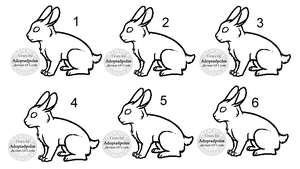 Paint-Friendly Rabbit Group Lineart (FREE USE) by Adoptadpoles