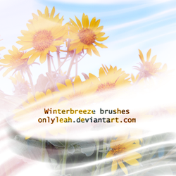 winter breeze brushes by OnlyLeah