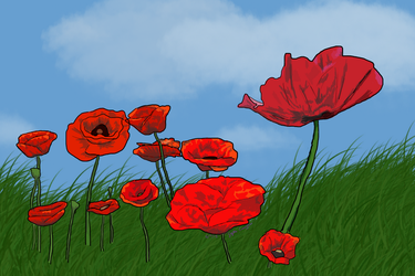 Poppies for Poppy!! by artmusic981