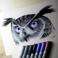 Owl Copic Marker Drawing by LethalChris