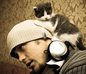 Z feat the mighty cat hat II by c1p0