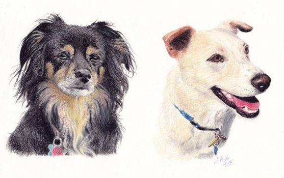 Woof1 by pixeleiderdown