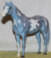 Breyer Twill Stock 2 by Lovely-DreamCatcher