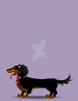 The Doggy Diva Flash Hmwrk by Asher-Bee