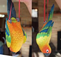 Sun Conure Carving by greencheek