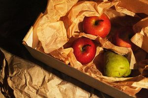 apples 2 by manahan