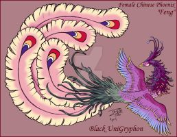 Female Chinese Phoenix Color by BlackUniGryphon