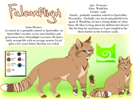 Falconflight Reference Sheet (Warriorsona) by Spottedfire23
