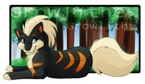 Black Shiny Growlithe