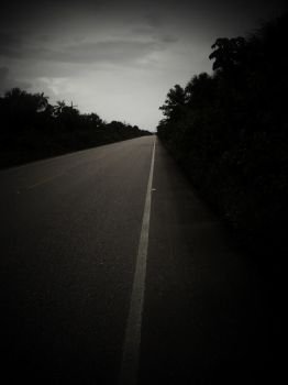 Lonely Road by angiesaravia