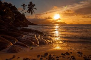 paradise beach by photoplace