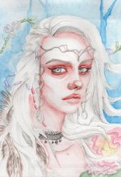 Nordic Beauty by Sterys