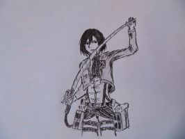 Mikasa by pagesofmylife