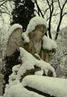 CEMETERY CRACOV 08.02.2013 by LuciforusArt