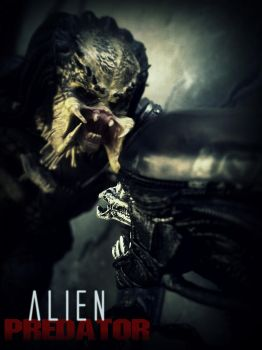 Alien vs Predator by tomzj1