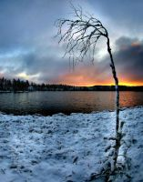Winter is coming by KariLiimatainen