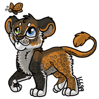 Lioness by Talmoi