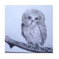Charcoal owl  by VliegendeFiets