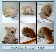 Ooak baby wombat plush by sengster