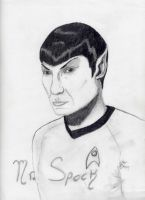 Mr. Spock by Flooboo