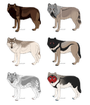Wolf Adoptables 1 OPEN by galianogangster