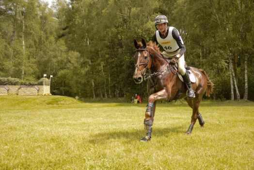 Stock - Wide Angle Full Speed Gallop 06 by LuDa-Stock
