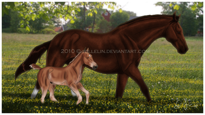Our first Pasture by Jullelin