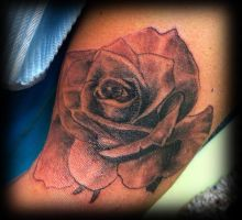 Realistic rose by WildThingsTattoo