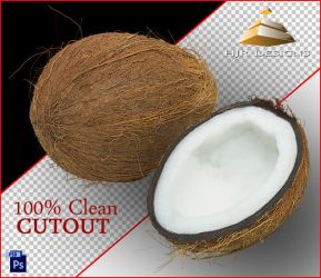 Clean Cutout of a Coconut by HJR-Designs