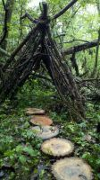 A Small Teepee in the woods by Wheriswaldo