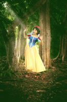 Snow White : Where Am I? by oruntia