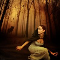 Don't go into the woods tonight by katmary