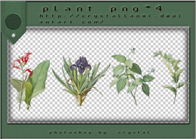 PNG PACK#3 - Plant by Crystallanxi