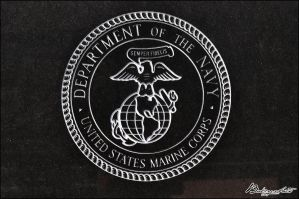 Marines Seal by bubzphoto