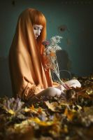 Fairy Tale Of Autumn by ArtofdanPhotography
