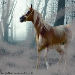 Cadilac horse eden eventing horse avatar by Galactic-Designs