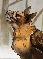 Bird Of Prey by Lemon-Deer