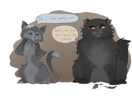 Cinderpaw and Yarrow(fang) by NeriTheKitten