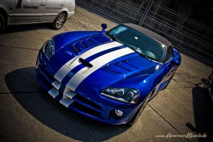 - Blue Snake - by AmericanMuscle