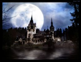 Moonlight Castle by Dehearted